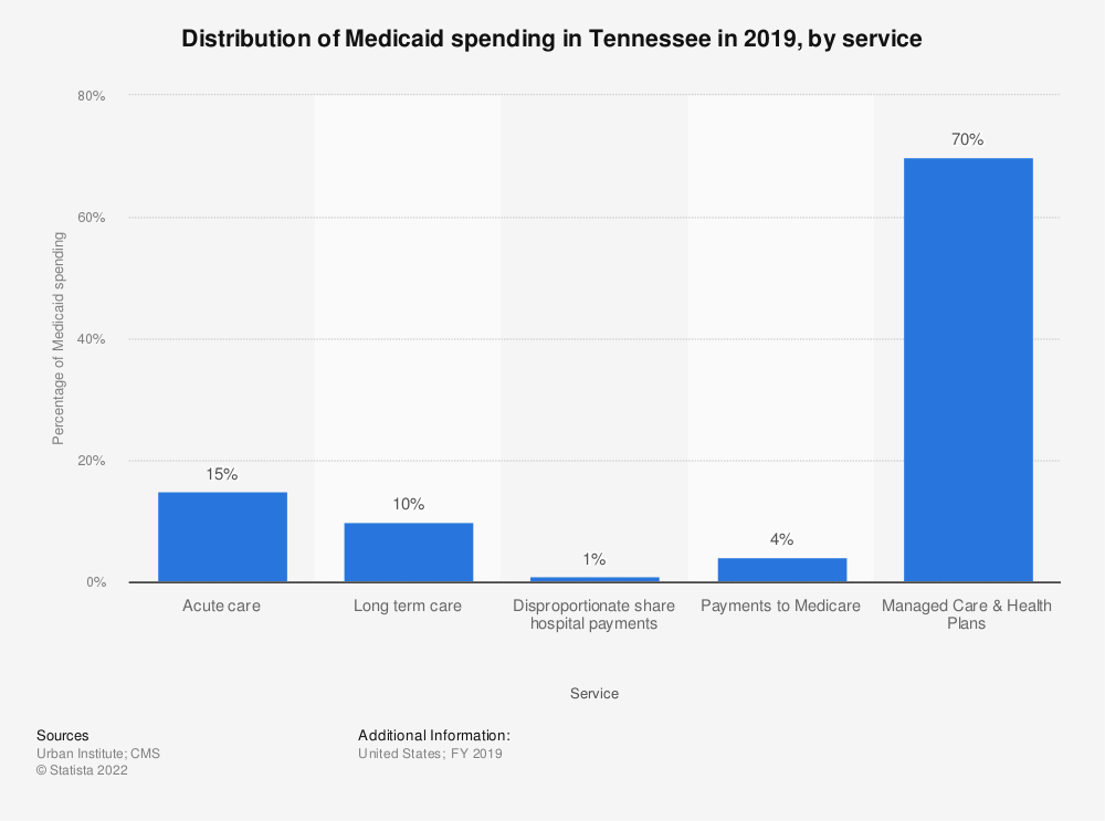 Statistic: Distribution of Medicaid spending in Tennessee in 2019, by service | Statista
