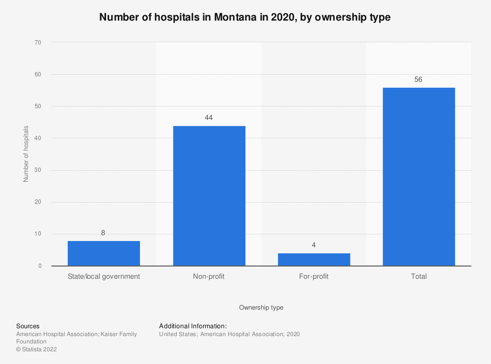 Statistic: Number of hospitals in Montana in 2017, by ownership type | Statista