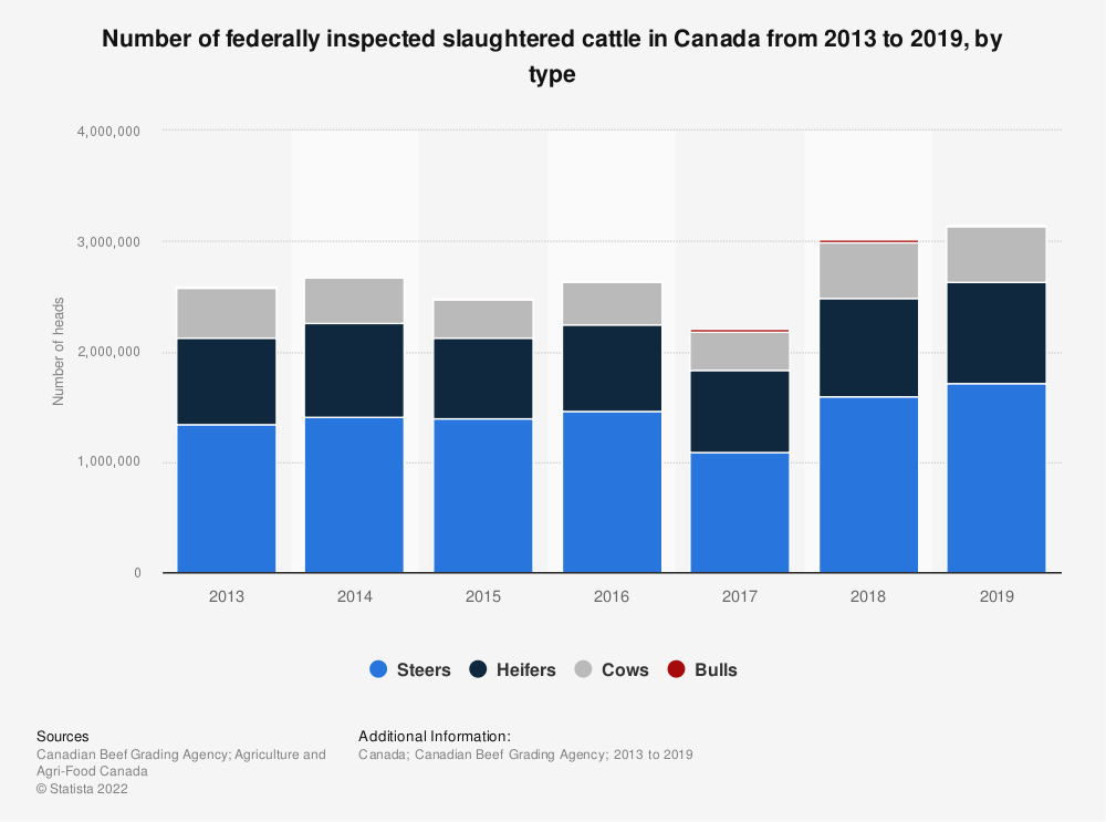 Statistic: Number of federally inspected slaughtered cattle in Canada from 2013 to 2019, by type | Statista
