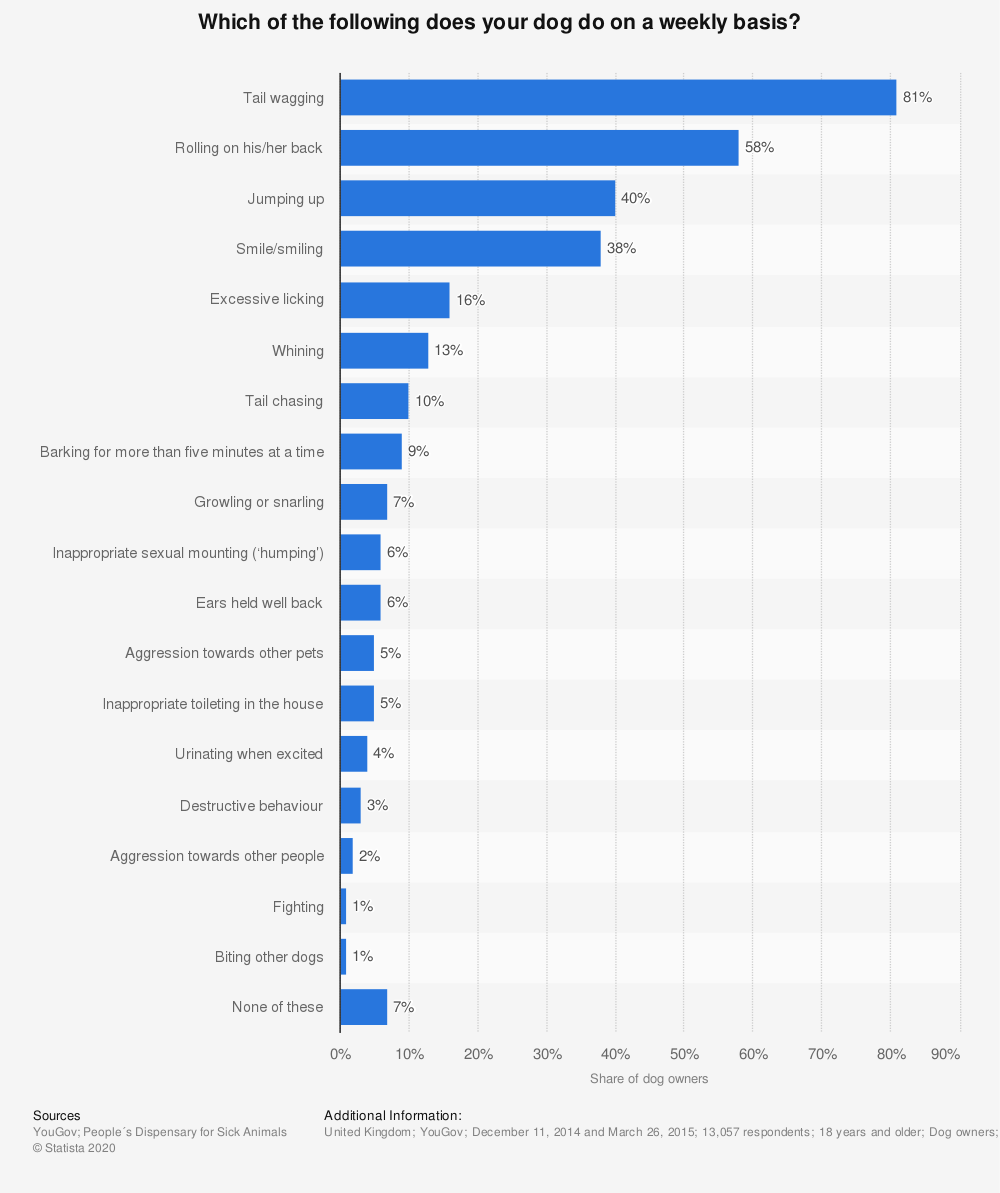 Statistic: Which of the following does your dog do on a weekly basis? | Statista
