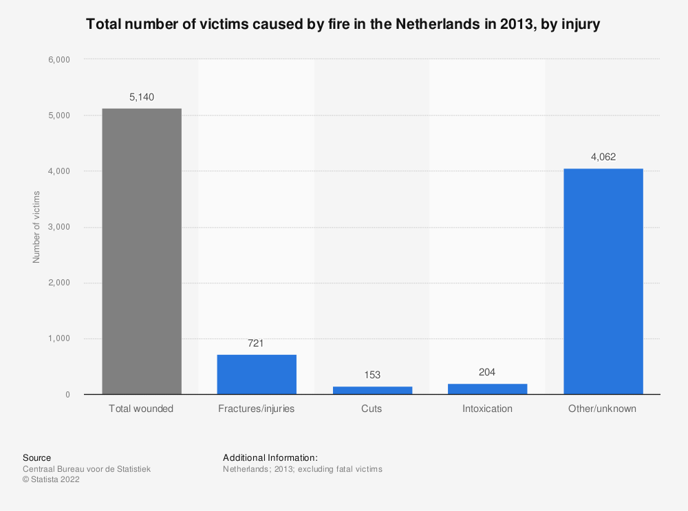 Statistic: Total number of victims caused by fire in the Netherlands in 2013, by injury   Statista