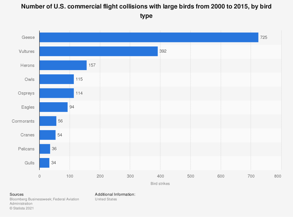 Statistic: Number of U.S. commercial flight collisions with large birds from 2000 to 2015, by bird type | Statista